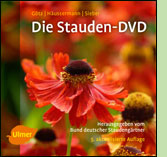 stauden_cd